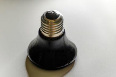 Halogen Basking Bulb