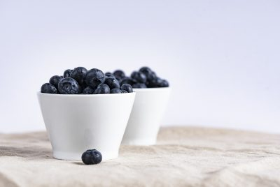 Blueberries For Bearded Dragons