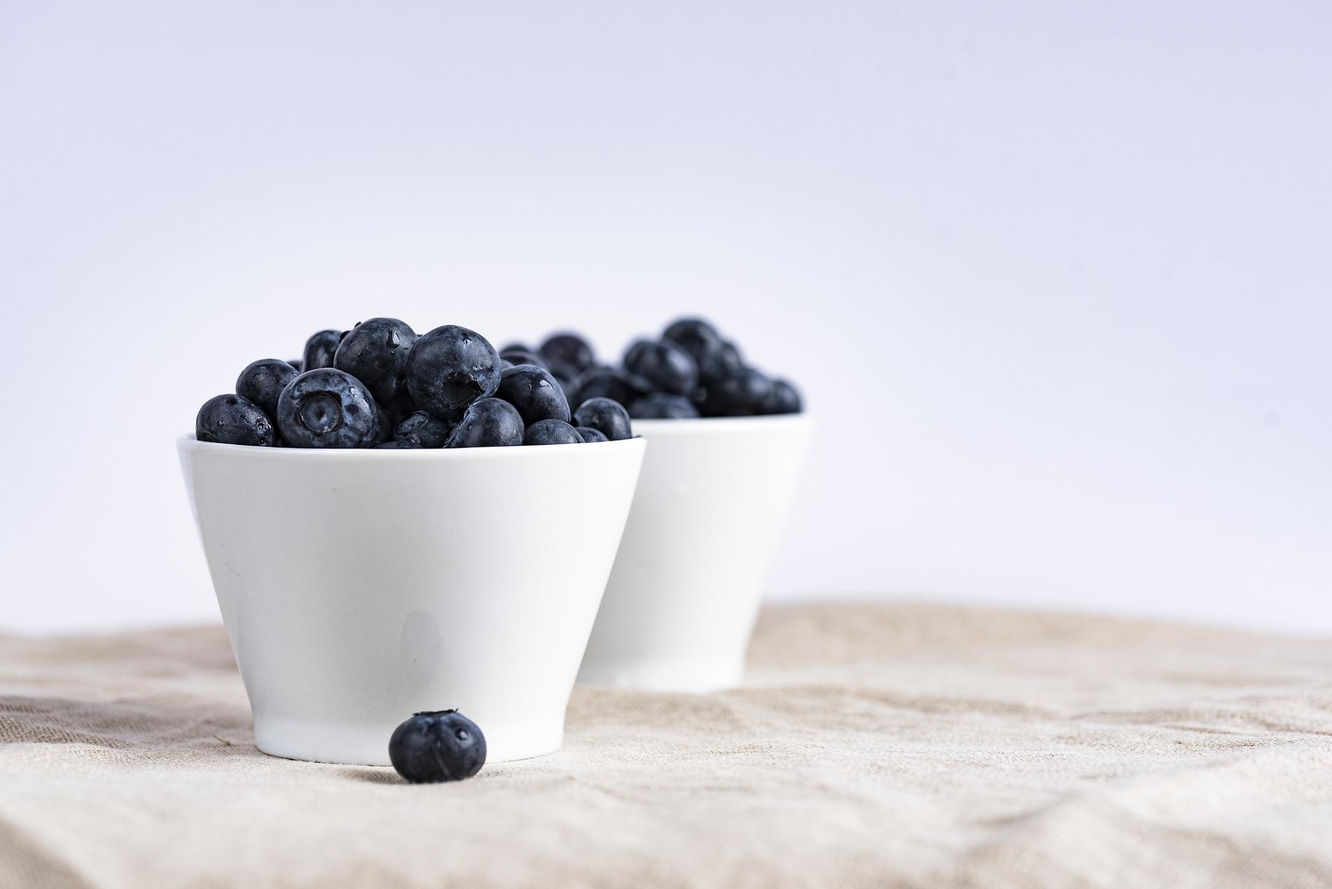 Blueberries For Bearded Dragons